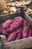 A wooden box with purple sweet potatoes
