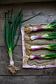 Fresh Purple Scallion on a Dish Cloth