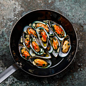 Mussels Clams Kiwi with garlic and parsley in cooking pan on metal background