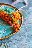 Twig sea buckthorn berries