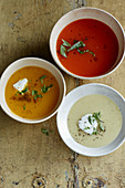 Potato soup, tomato soup and pumpkin soup