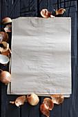 Zwiebelschalen um Papiertüte