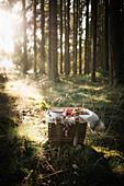 Picknickkörbchen im Wald, gefüllt mit veganem Schokoladenbrötchen, Obst und Kaffee