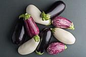 Various coloured aubergines