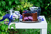 Chocolate cheesecake with blueberry in a garden