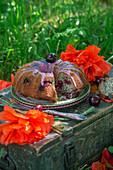 Mohnkuchen mit Kirschen und Kirschglasur
