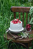 Biskuitkuchen mit Holunderblütensirup, Buttercreme und Erdbeeren