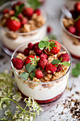 Yoghurt cream with crumble and wild strawberries