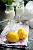 Zitronensorbet mit Grappa (Dessert von Stefano Catenacci, Schweden)