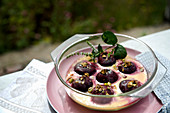Gratinated plums filled with almonds and pistachios in vanilla sauce