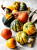 Selection of different autumn squashes and vegetable chopper