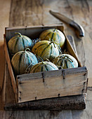 Provence cantaloupe melons in box with knife