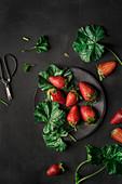 Erdbeeren mit grünen Blättern (Draufsicht)