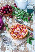 Plum pie with quark filling