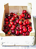 Red cherries in a fruit shipping box