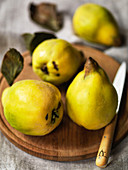 English Quinces on a board with knife