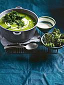 Gemüsecremesuppe mit Grünkohlchips und Meerrettichcreme
