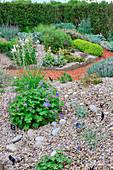 Kiesgarten mit Trockenheit vertragenden Pflanzen