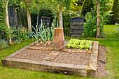 Quadratisches Gemüsebeet mit Holzbalken als Beeteinfassung