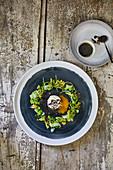 Gerösteter Blumenkohl mit pochierten Eiern und Mohnbutter