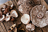 Different sorts of eddible mushrooms on a wooden background