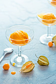 Mango sorbet with mango sauce and physalis berry