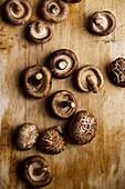 Shiitake mushrooms on old wooden table