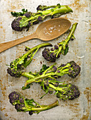 Purple sprouting broccoli with rock salt