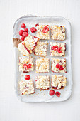 Gluten-free raspberry coconut slice