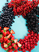 Various berries, arranged in a circle
