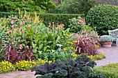 Sommerbeet mit indischem Blumenrohr, Dahlien, Federborstengras und Zweizahn