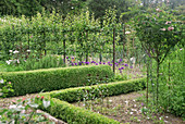 Bauerngarten mit Spalierobst und Buchs-Hecken