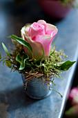 Kleine Dekoration mit Rosenblüte und Moos