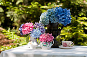 Hortensienblüten : 'Nikko Blue', 'Endless Summer', 'Pink Parfait' und 'Glowing Embers'