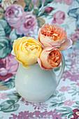 Blüten von englischen Rosen 'Lady Emma Hamilton' und 'Graham Thomas'