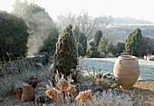 Garten im Winter: Koniferen, Beete und Rasen mit Rauhreif