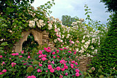 Rosen bewachsen Mauer und gothisches Fenster