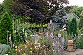Leinkraut und Nachtkerze im Cottage Garten