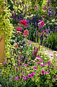Beet mit Storchschnabel, Spornblume, Ziersalbei
