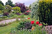 Blick auf Frühsommer Garten mit Stauden, Gehölzen und Teich