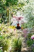 Weg zwischen blühenden Beeten im Cottage Garten