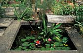 Wasserbecken aus Holzbalken mit Seerose