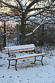 Verschneite Bank unterm Baum im Garten