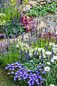 Beet mit Lavendel, Ziersalbei und Glockenblume am Teich mit Wasserhyazinthen