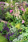 Cottage Garten mit Steppensalbei, Fingerhut und Rosen