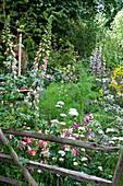 Naturgarten mit Fingerhut, Akelei, Baldrian und Fenchel