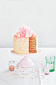 Fairy bread layer cake