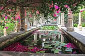 Mediterranes Wasserbecken mit Seerosen