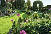 Formaler Garten mit Formschnitt-Gehölzen und Zierlauch