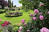 Rondell mit Buchs-Einfassung und Rosen-Stämmchen im Rasen